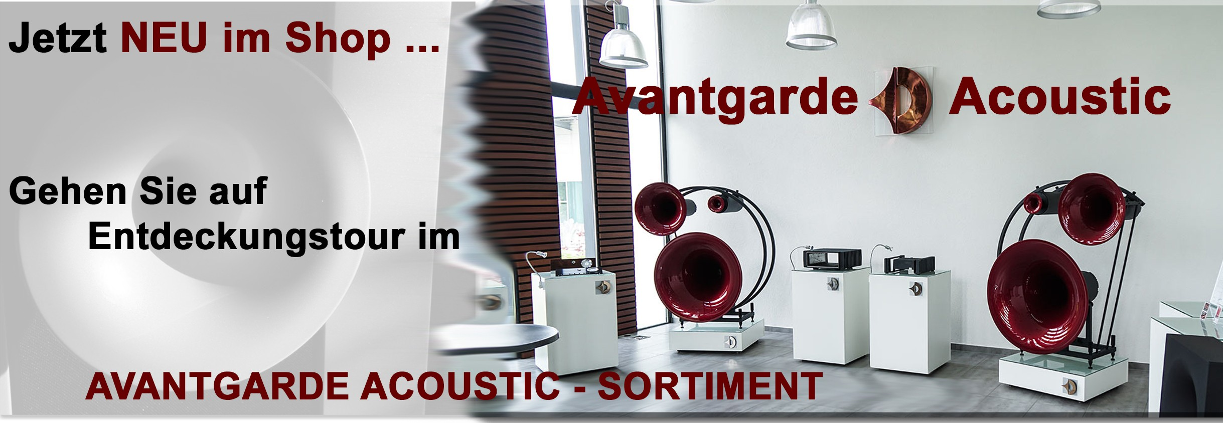 Avantgarde Acoustic